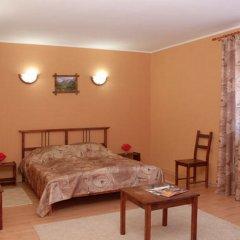 Гостиница Альпийский двор 3* Номер Комфорт с различными типами кроватей