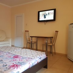 Гостиница Ludmila Plus 3* Стандартный номер с различными типами кроватей фото 3