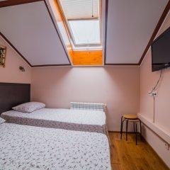 Гостиница Теремок Пролетарский Стандартный номер с разными типами кроватей фото 7