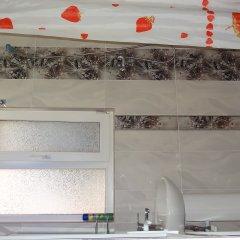 Гостевой Дом Золотая Рыбка Стандартный номер с различными типами кроватей фото 22