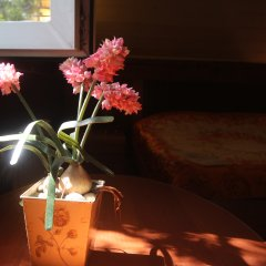Отель Guest House on Saltykova-Schedrina Номер Комфорт фото 21