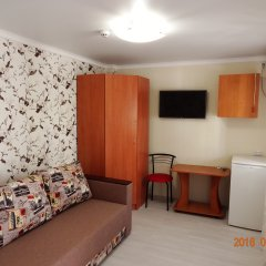 Гостевой Дом Золотая Рыбка Стандартный номер с различными типами кроватей фото 2