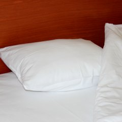 Гостевой Дом (Мини-отель) Ассоль Стандартный номер с различными типами кроватей фото 2