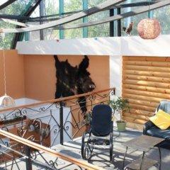 Гостиница Старые Традиции с домашними животными