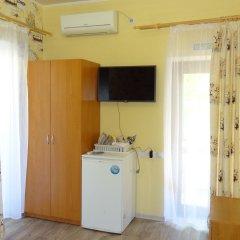 Гостевой Дом Золотая Рыбка Стандартный номер с различными типами кроватей фото 3