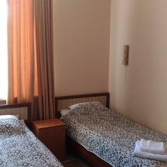 Мини-отель ТарЛеон 2* Стандартный номер разные типы кроватей фото 3
