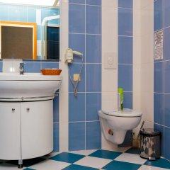 Гостиница Белый Грифон Номер Эконом с различными типами кроватей фото 12