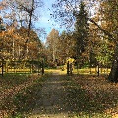 Гостиница в лесу в Звенигороде отзывы, цены и фото номеров - забронировать гостиницу в лесу онлайн Звенигород