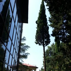 Гостиница Green Club в Сочи 4 отзыва об отеле, цены и фото номеров - забронировать гостиницу Green Club онлайн вид на фасад