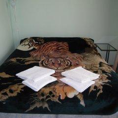 Mini-Hotel Alexandria Plus Стандартный номер с различными типами кроватей фото 12