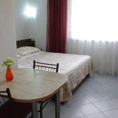 Мини-отель Вилла Блюз Стандартный номер с различными типами кроватей фото 15