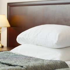 Гостиница Салют 4* Номер Комфорт с разными типами кроватей