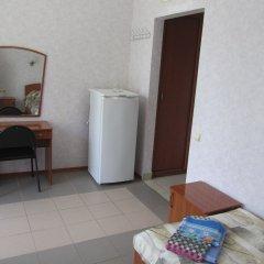 Гостиница Пансионат Кристалл Стандартный номер с разными типами кроватей фото 12