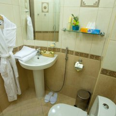 Гостиница Эрмитаж 3* Стандартный номер с разными типами кроватей фото 5