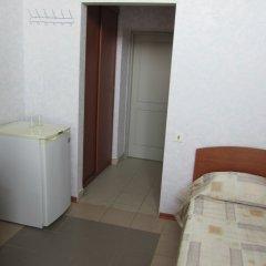 Гостиница Пансионат Кристалл Стандартный номер с разными типами кроватей фото 11