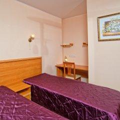 Гостиница Теремок Пролетарский Номер Премиум с разными типами кроватей фото 10