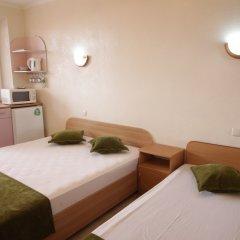 Мини-отель Вилла Блюз Стандартный номер с различными типами кроватей фото 2