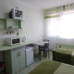 Мини-отель Вилла Блюз Стандартный номер с различными типами кроватей фото 23