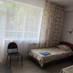 Гостиница Пансионат Кристалл Стандартный номер с разными типами кроватей фото 15