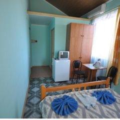 Гостиница Частный пансионат Лазурный Стандартный номер с различными типами кроватей фото 10