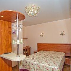Гостиница Теремок Пролетарский Номер Премиум с разными типами кроватей фото 18