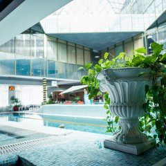 Гостиница Novahoff спа курорт бассейн фото 2