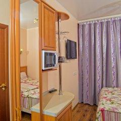 Гостиница Теремок Пролетарский Стандартный номер с разными типами кроватей фото 12