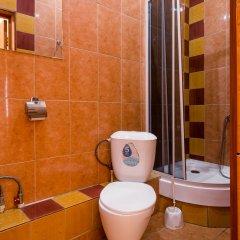 Гостиничный комплекс Жар-Птица Стандартный номер с различными типами кроватей фото 4