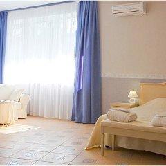 Гостиница Спарта Номер Делюкс с различными типами кроватей фото 6