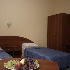Апартаменты Гостевые комнаты и апартаменты Грифон Номер Делюкс с различными типами кроватей фото 17