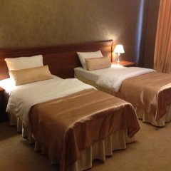 Гостиница Золотой Дельфин 3* Стандартный номер с различными типами кроватей фото 2