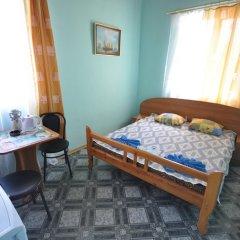 Гостиница Частный пансионат Лазурный Стандартный номер с различными типами кроватей фото 3