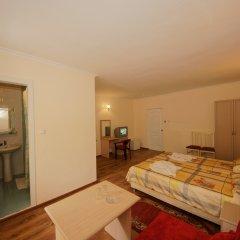 Отель Мечта Полулюкс фото 3