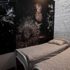 Hostel Petya and the Wolf - V.O. Номер Эконом разные типы кроватей