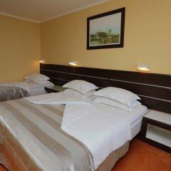Hotel Tara 4* Стандартный номер с различными типами кроватей