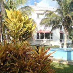 Отель Mansion Giahn Bed & Breakfast Мексика, Канкун - отзывы, цены и фото номеров - забронировать отель Mansion Giahn Bed & Breakfast онлайн открытый бассейн фото 4