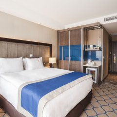 Holiday Inn Kayseri - Duvenonu 4* Стандартный номер с различными типами кроватей
