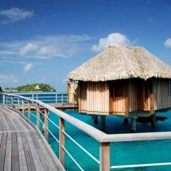 Отель Sofitel Bora Bora Marara Beach Resort Французская Полинезия, Бора-Бора - отзывы, цены и фото номеров - забронировать отель Sofitel Bora Bora Marara Beach Resort онлайн приотельная территория