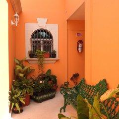 Отель Boutique Casa Mallorca Мексика, Канкун - отзывы, цены и фото номеров - забронировать отель Boutique Casa Mallorca онлайн коридор