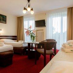 Отель Halny Pensjonat 2* Стандартный номер
