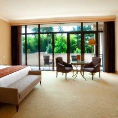 Georgia Palace Hotel & SPA 5* Номер Делюкс с различными типами кроватей