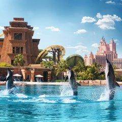 Отель Atlantis The Palm аквапарк