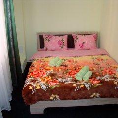 Мини-Отель Хотси-Тотси Стандартный номер с двуспальной кроватью фото 2