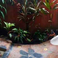 Отель Shanti Lodge Phuket 3* Номер Делюкс с различными типами кроватей