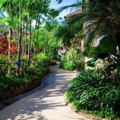 Отель Coconut Village Resort собственный двор