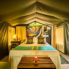 Отель Mahoora Tented Safari Camp All-Inclusive - Yala Стандартный номер с различными типами кроватей