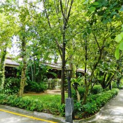 Отель Kata Country House сад
