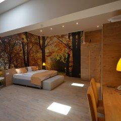 Hotel Emonec 3* Стандартный номер с различными типами кроватей