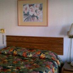 Отель On The Vegas Boulevard США, Лас-Вегас - отзывы, цены и фото номеров - забронировать отель On The Vegas Boulevard онлайн комната для гостей фото 3