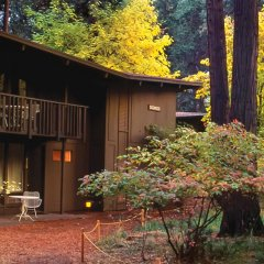 Yosemite Valley Lodge National Park United States Of